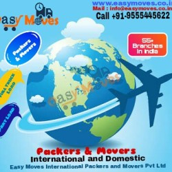 Easy Moves Packers And Movers Pvt Ltd Delhi